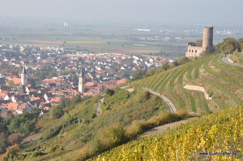 Blick über die Rheinebene